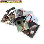 Pigna Wildlife A/5 tűzött füzet 42 lapos kockás (27-32, 27-42)