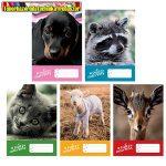 Füzet pd kisalakú 14-32 vonalas Cute Animals vegyes