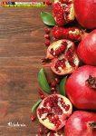 Füzet, tűzött, A4, vonalas, 96 lap, Victoria Fruit